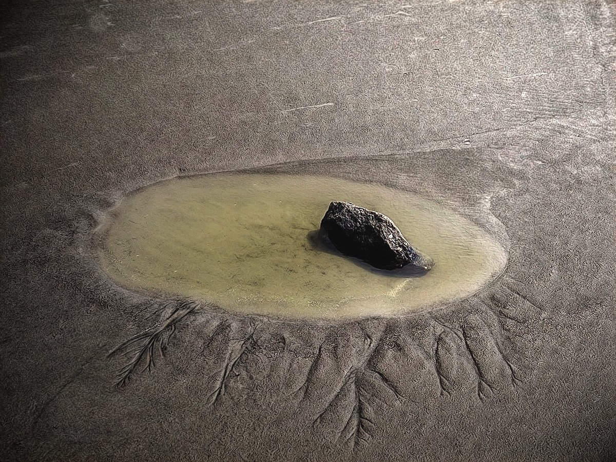 """Core"" by Dave Petraglia, Photograph, Mud Season Review Artist"