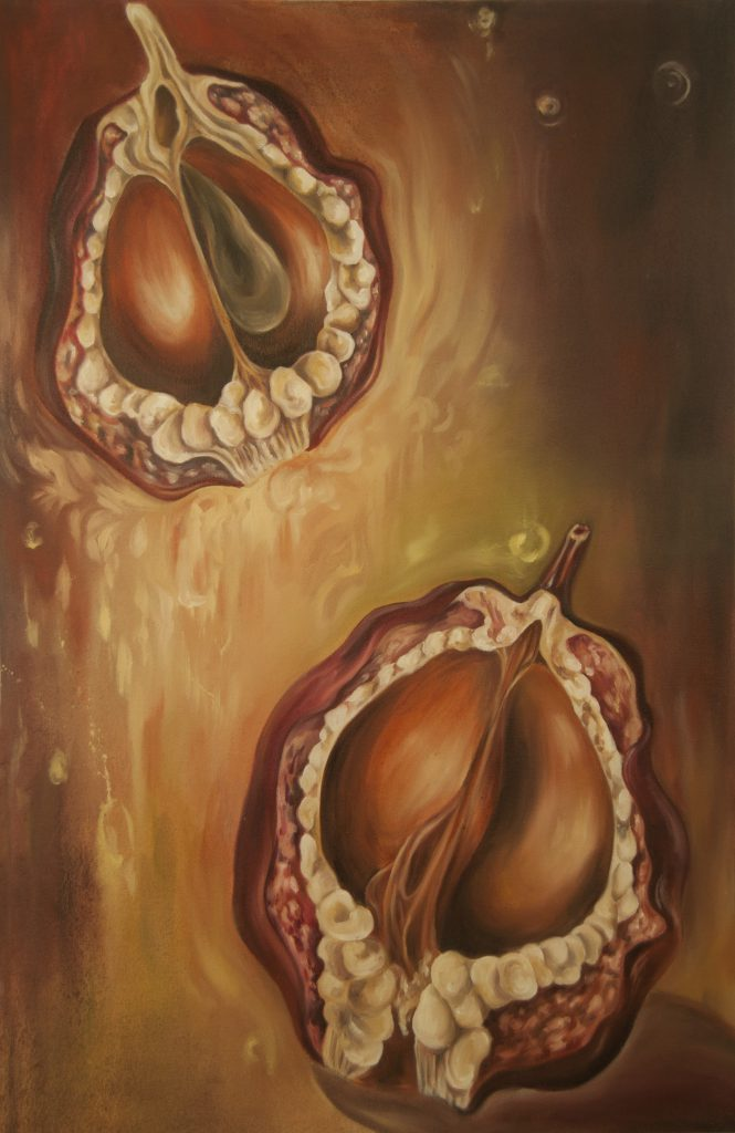 """Last of the Legacy (Seed Pods)"" by Monica Stewart, oil on canvas, approx. 2 x 3 ft, 2012"