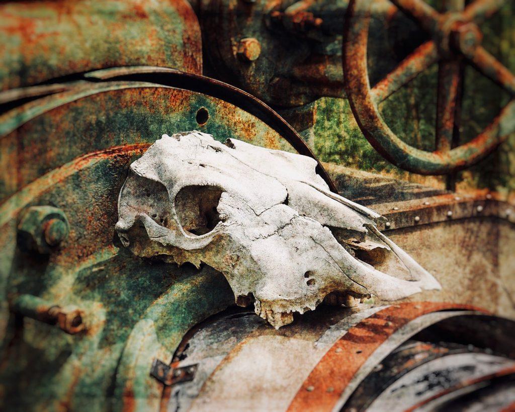Ghost in the Machine, Digital Photo 2015
